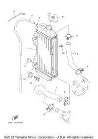 >Radiator Hose